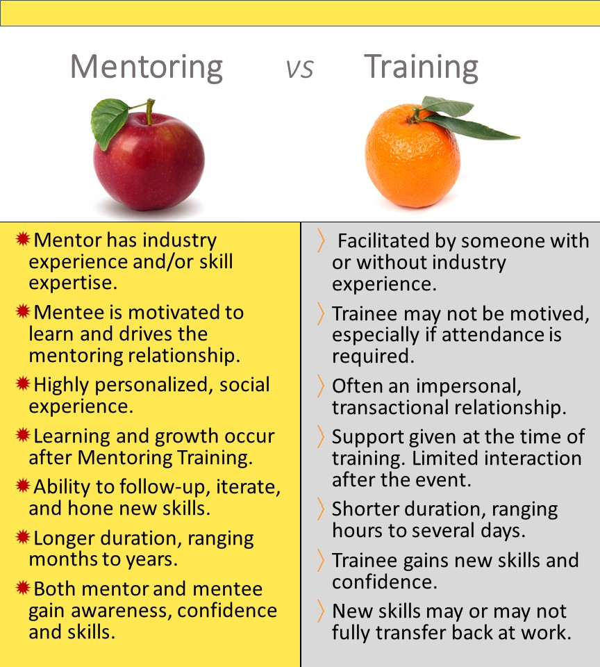 The Difference Between Mentoring & Training